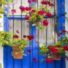 courtyards-1520500_960_720-e1511130275708